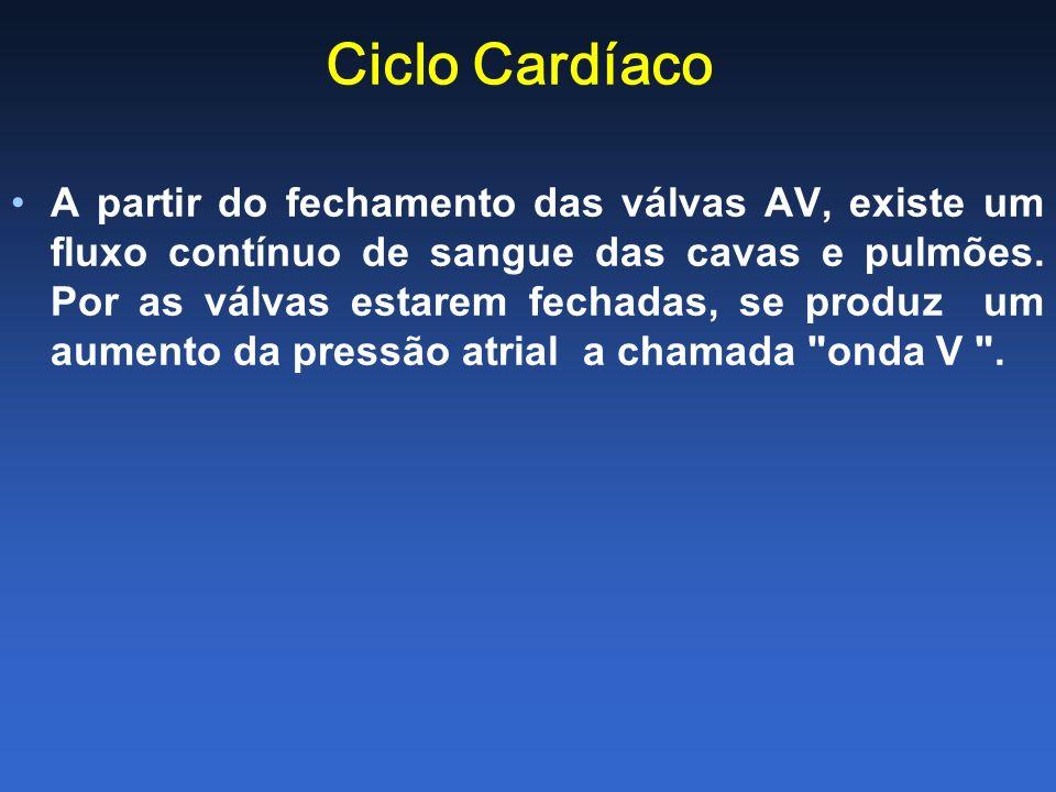Ciclo Cardíaco A partir do fechamento das válvas AV, existe um fluxo contínuo de sangue das cavas e pulmões. Por as válvas estarem fechadas, se produz