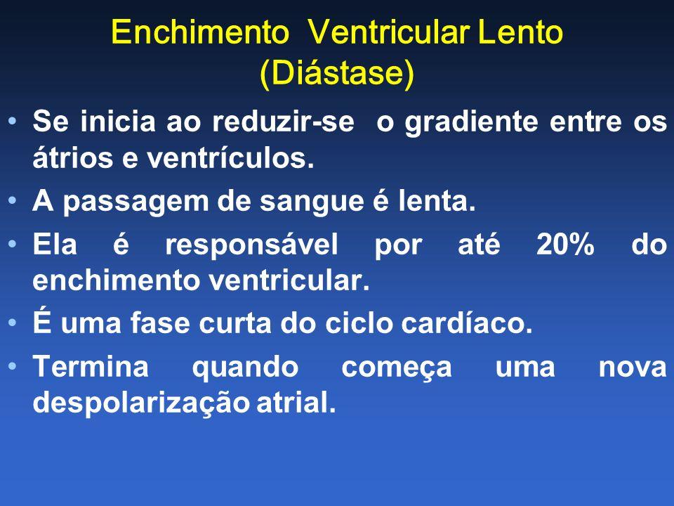 Enchimento Ventricular Lento (Diástase) Se inicia ao reduzir-se o gradiente entre os átrios e ventrículos. A passagem de sangue é lenta. Ela é respons