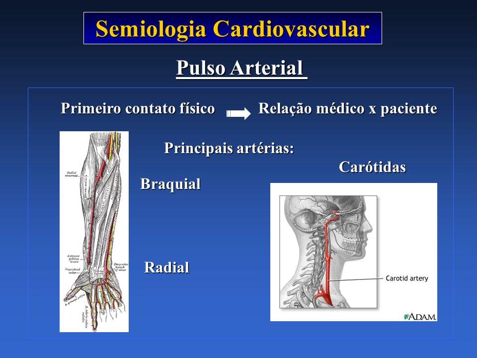 Semiologia Cardiovascular Primeiro contato físico Relação médico x paciente Primeiro contato físico Relação médico x paciente Pulso Arterial Principai