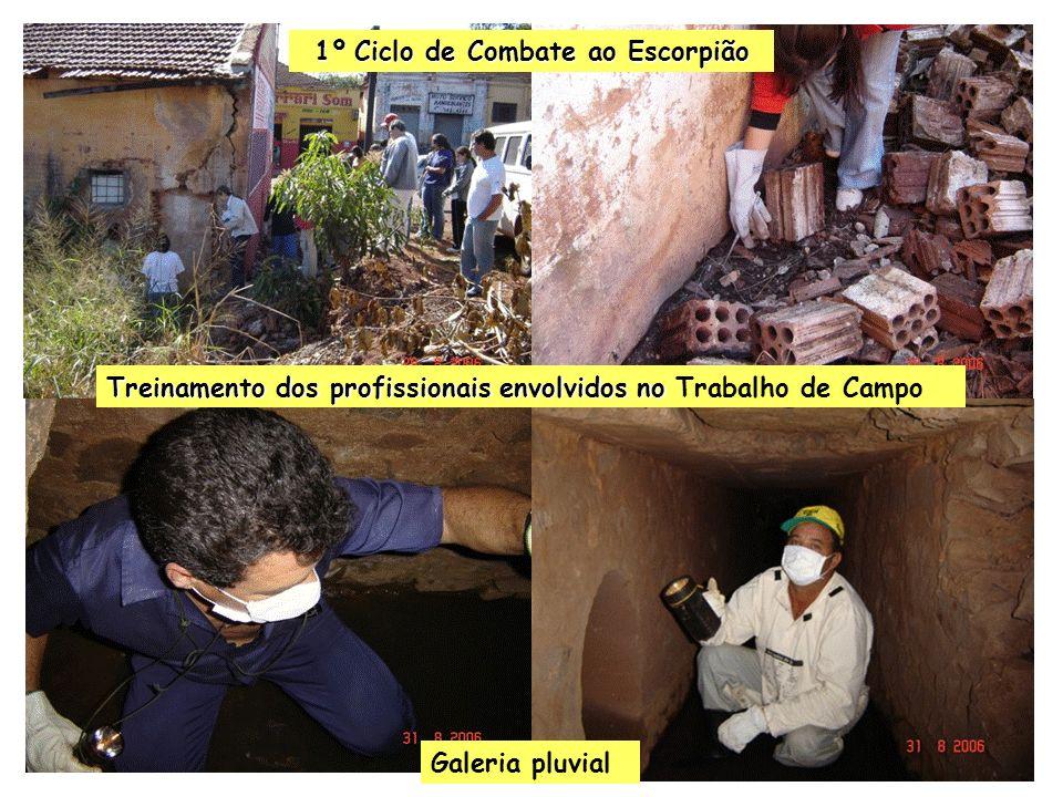 Treinamento dos profissionais envolvidos no Treinamento dos profissionais envolvidos no Trabalho de Campo Galeria pluvial 1º Ciclo de Combate ao Escor