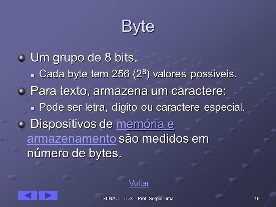19SENAC – TDS – Prof.Sérgio Lima Byte Um grupo de 8 bits.
