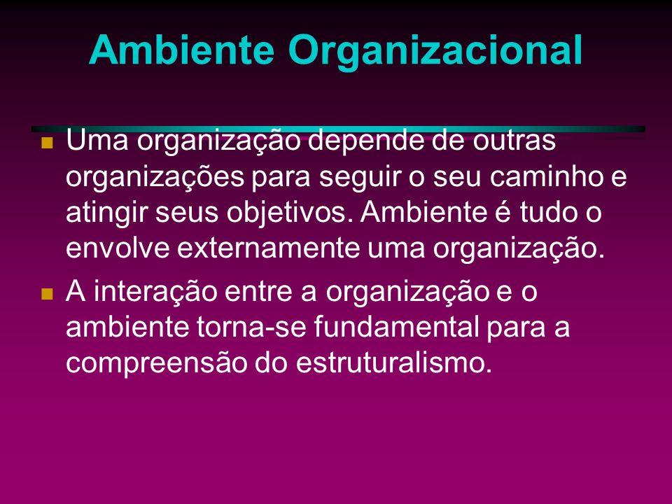 Teoria Estruturalista As organizações são unidades sociais que procuram atingir objetivos específicos.
