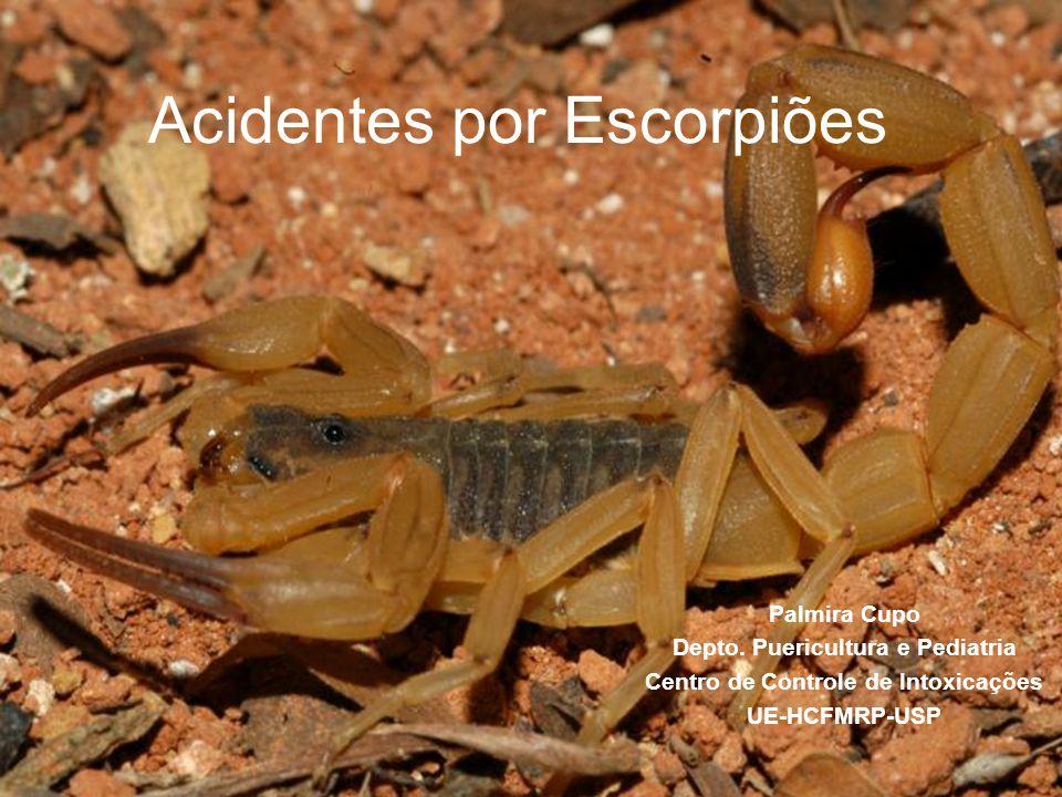 Acidentes por Escorpiões Palmira Cupo Depto. Puericultura e Pediatria Centro de Controle de Intoxicações UE-HCFMRP-USP