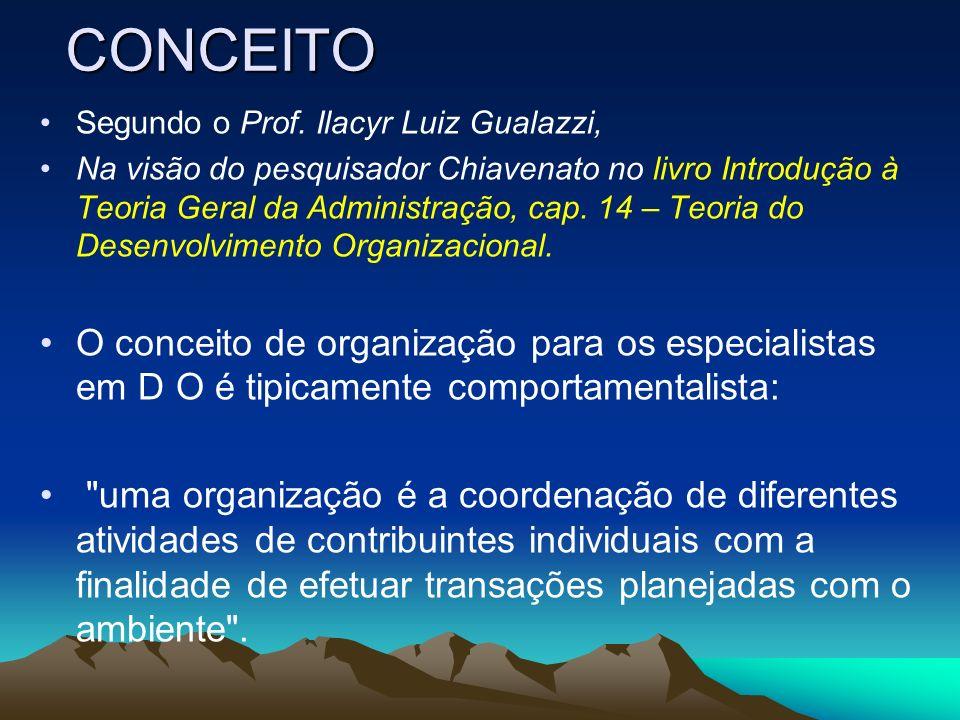 CONCEITO Segundo o Prof. Ilacyr Luiz Gualazzi, Na visão do pesquisador Chiavenato no livro Introdução à Teoria Geral da Administração, cap. 14 – Teori