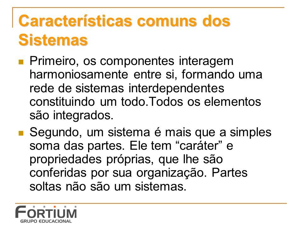 Características comuns dos Sistemas Primeiro, os componentes interagem harmoniosamente entre si, formando uma rede de sistemas interdependentes consti