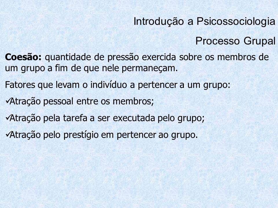 Introdução a Psicossociologia Processo Grupal Coesão: quantidade de pressão exercida sobre os membros de um grupo a fim de que nele permaneçam. Fatore