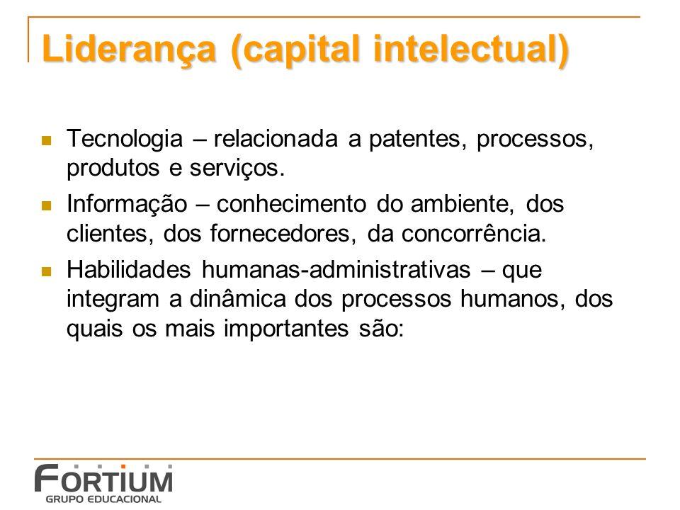 Liderança (capital intelectual) Tecnologia – relacionada a patentes, processos, produtos e serviços.
