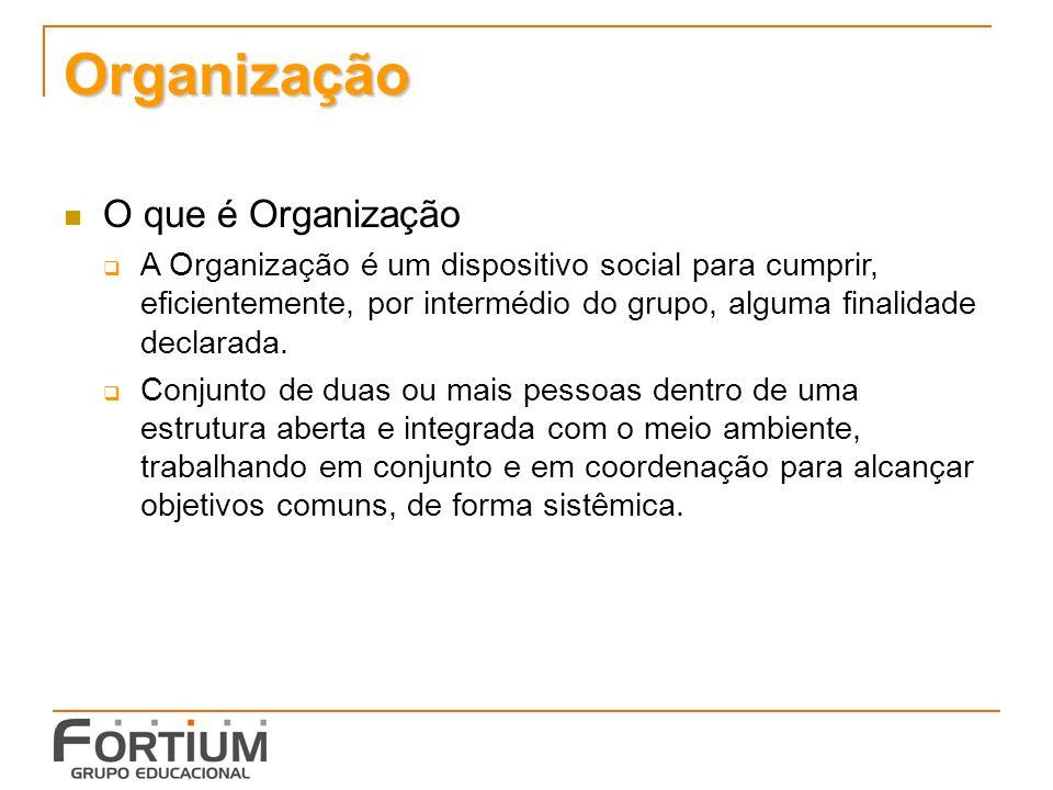 Organização O que é Organização A Organização é um dispositivo social para cumprir, eficientemente, por intermédio do grupo, alguma finalidade declarada.