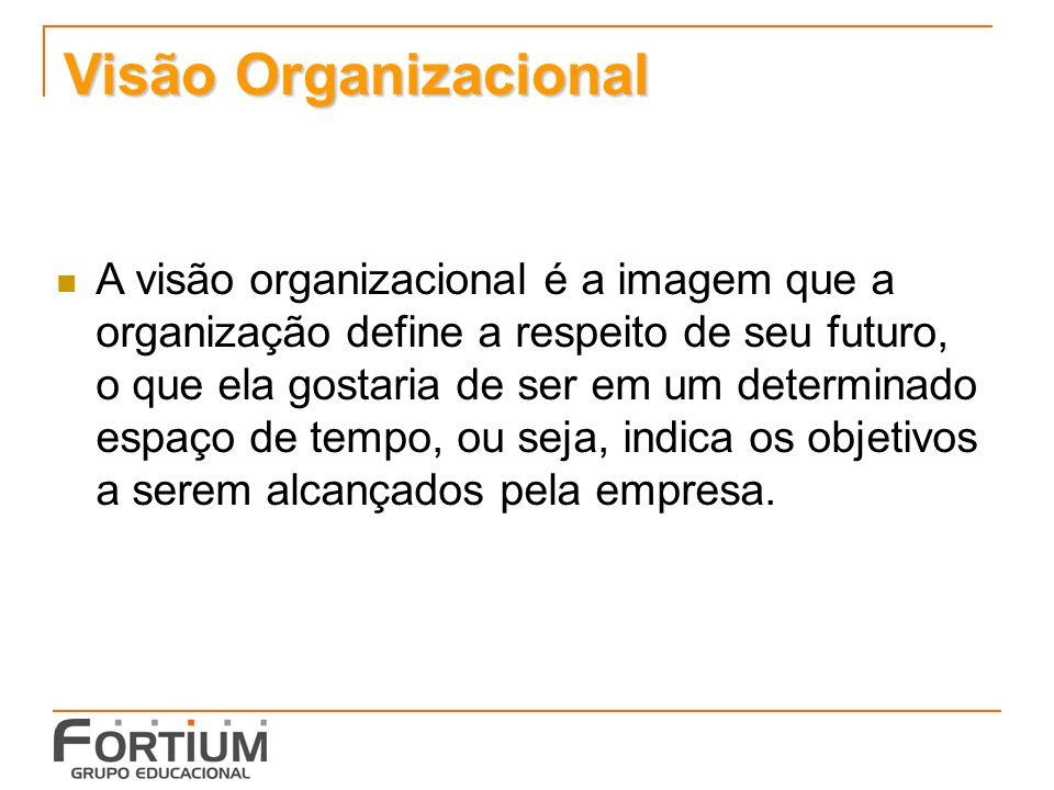 Visão Organizacional A visão organizacional é a imagem que a organização define a respeito de seu futuro, o que ela gostaria de ser em um determinado espaço de tempo, ou seja, indica os objetivos a serem alcançados pela empresa.