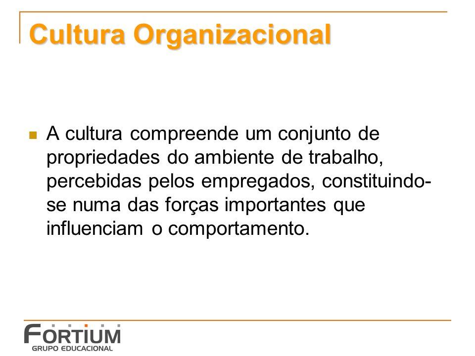 Cultura Organizacional A cultura compreende um conjunto de propriedades do ambiente de trabalho, percebidas pelos empregados, constituindo- se numa das forças importantes que influenciam o comportamento.