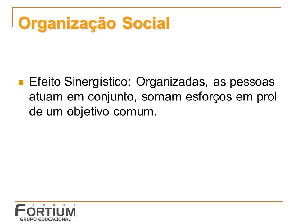 Organização Social Efeito Sinergístico: Organizadas, as pessoas atuam em conjunto, somam esforços em prol de um objetivo comum.