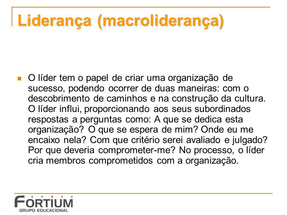 Liderança (macroliderança) O líder tem o papel de criar uma organização de sucesso, podendo ocorrer de duas maneiras: com o descobrimento de caminhos e na construção da cultura.