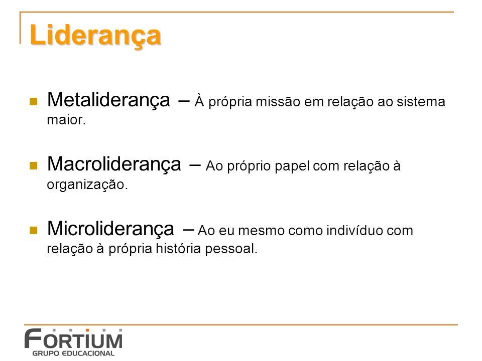 Liderança Metaliderança – À própria missão em relação ao sistema maior.