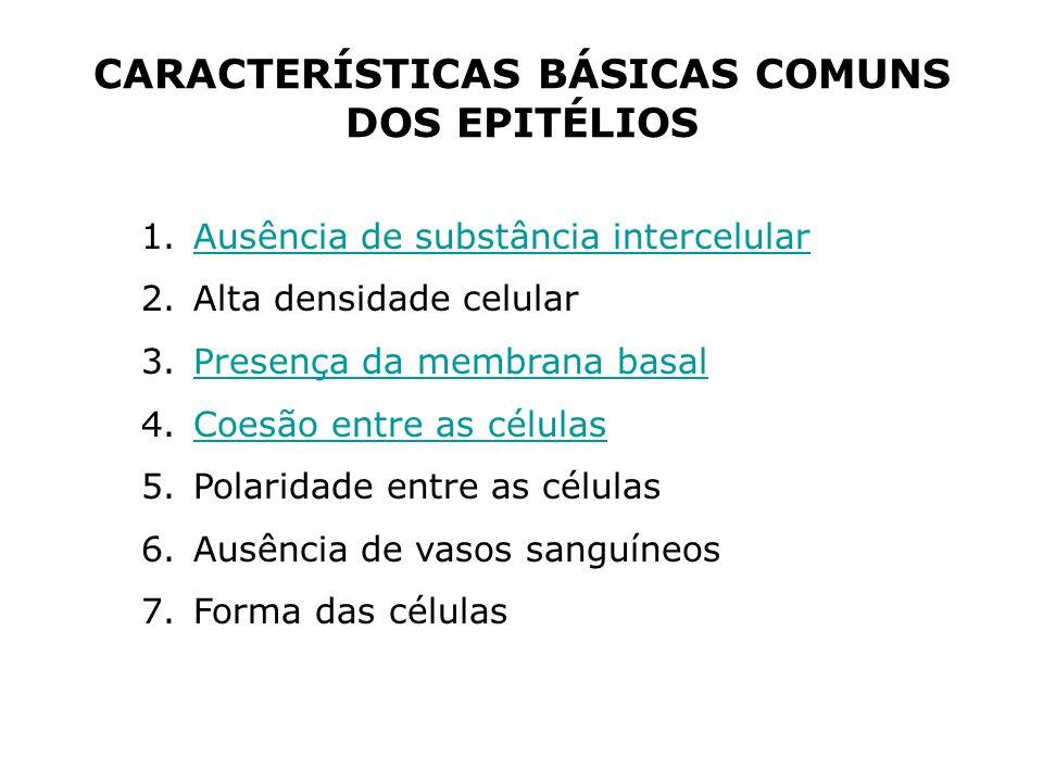 CARACTERÍSTICAS BÁSICAS COMUNS DOS EPITÉLIOS 1.Ausência de substância intercelularAusência de substância intercelular 2.Alta densidade celular 3.Prese