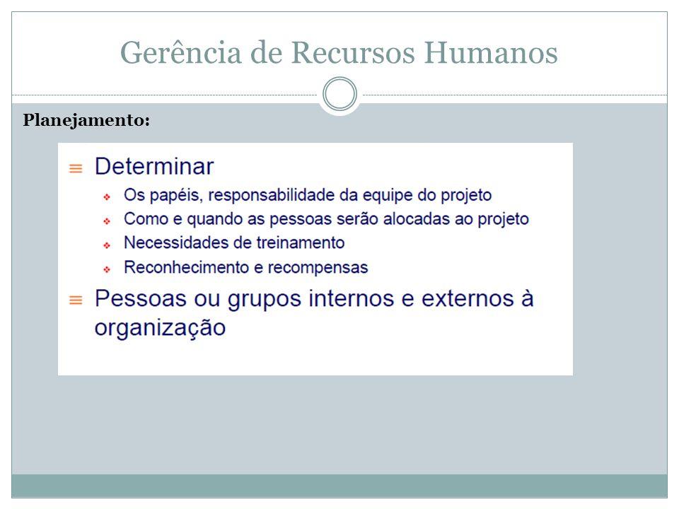 Gerência de Recursos Humanos Gerenciar a Equipe do Projeto: