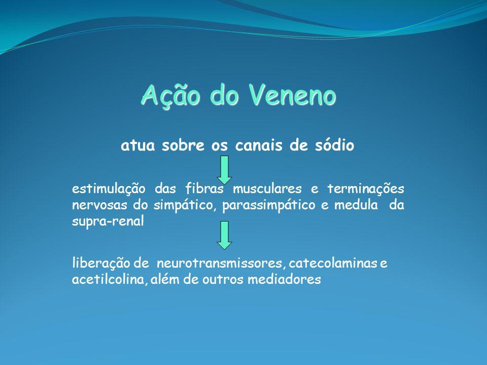 Ação do Veneno atua sobre os canais de sódio estimulação das fibras musculares e terminações nervosas do simpático, parassimpático e medula da supra-r