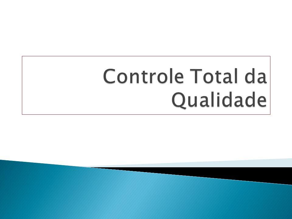 controle de projetos e documentos; histórico das relações com fornecedores; registro de inspeções, testes de produtos;e ações corretivas, manuseio e armazenagem, embalagem, distribuição e auditoria.
