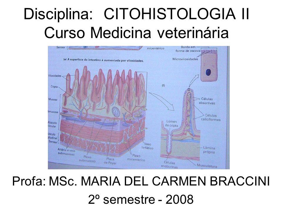 Disciplina: CITOHISTOLOGIA II Curso Medicina veterinária Profa: MSc. MARIA DEL CARMEN BRACCINI 2º semestre - 2008