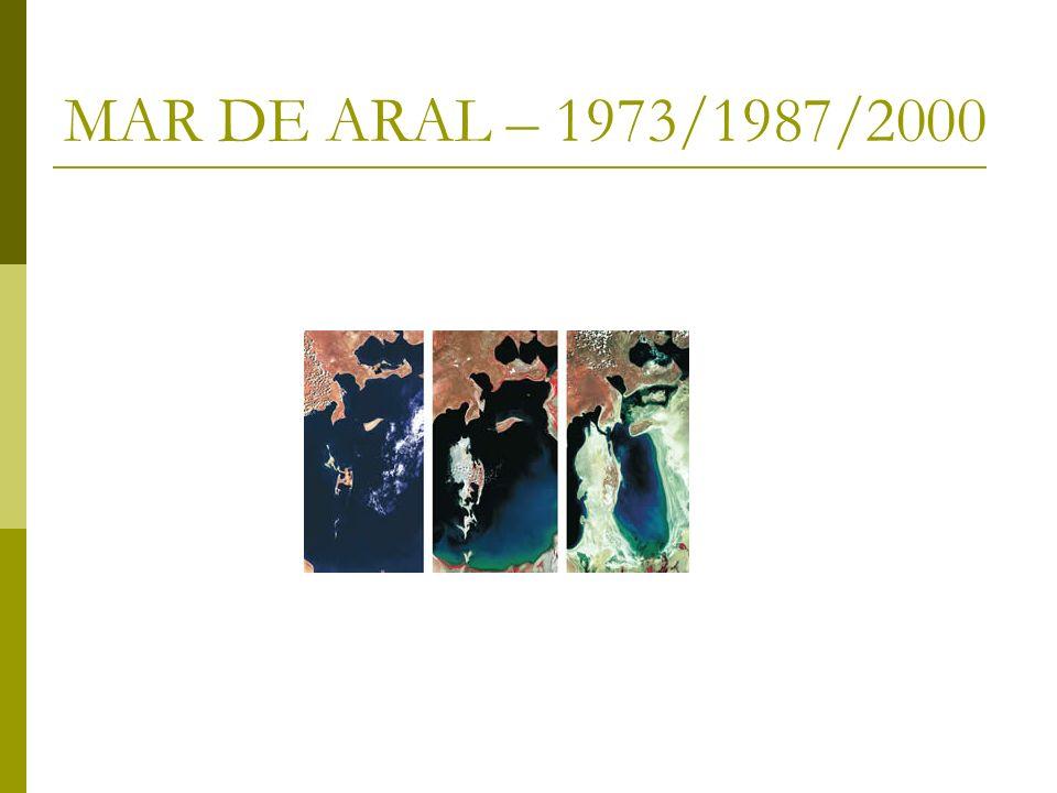 MAR DE ARAL – 1973/1987/2000
