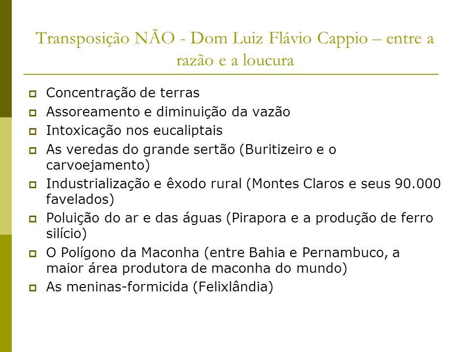 Transposição NÃO - Dom Luiz Flávio Cappio – entre a razão e a loucura Concentração de terras Assoreamento e diminuição da vazão Intoxicação nos eucali