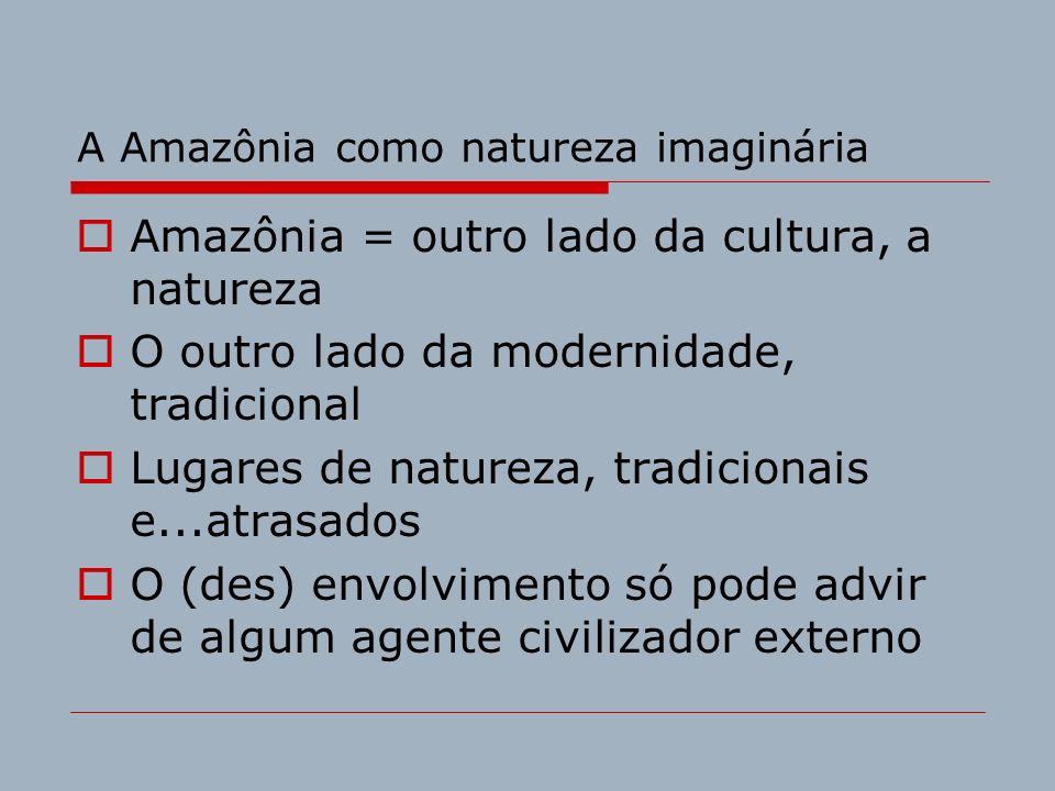 A Amazônia como natureza imaginária Amazônia = outro lado da cultura, a natureza O outro lado da modernidade, tradicional Lugares de natureza, tradici