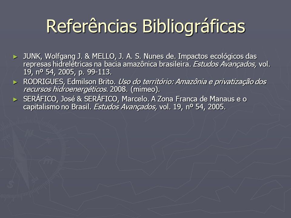 Referências Bibliográficas JUNK, Wolfgang J. & MELLO, J. A. S. Nunes de. Impactos ecológicos das represas hidrelétricas na bacia amazônica brasileira.