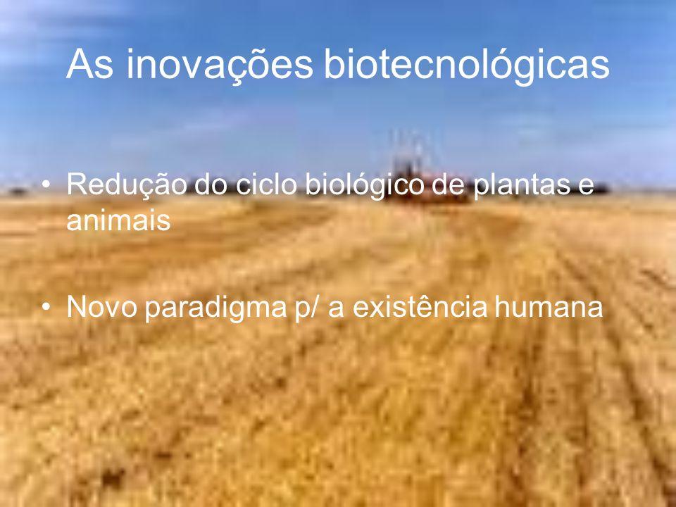 As inovações biotecnológicas Redução do ciclo biológico de plantas e animais Novo paradigma p/ a existência humana