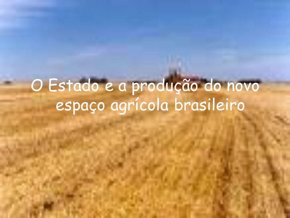 O Estado e a produção do novo espaço agrícola brasileiro