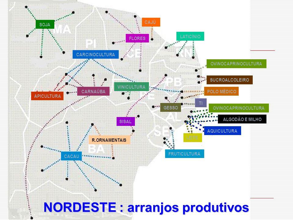 NORDESTE : arranjos produtivos CACAU R.ORNAMENTAIS SISAL CARNAÚBA APICULTURA CARCINOCULTURA FLORES SOJA LATICÍNIO VINICULTURA OVINOCAPRINOCULTURA FRUT