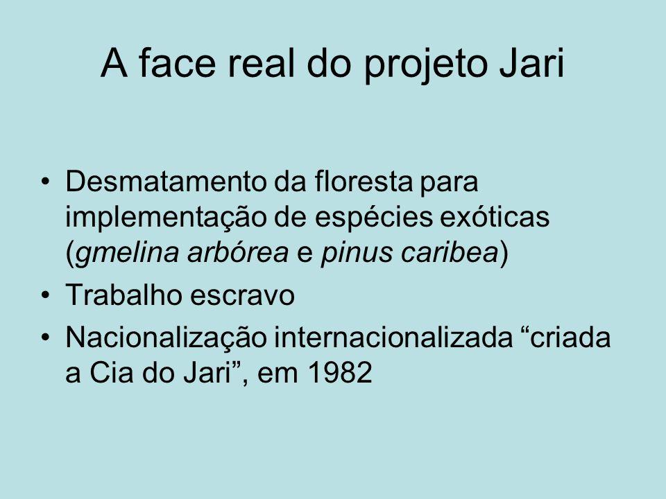 A face real do projeto Jari Desmatamento da floresta para implementação de espécies exóticas (gmelina arbórea e pinus caribea) Trabalho escravo Nacion