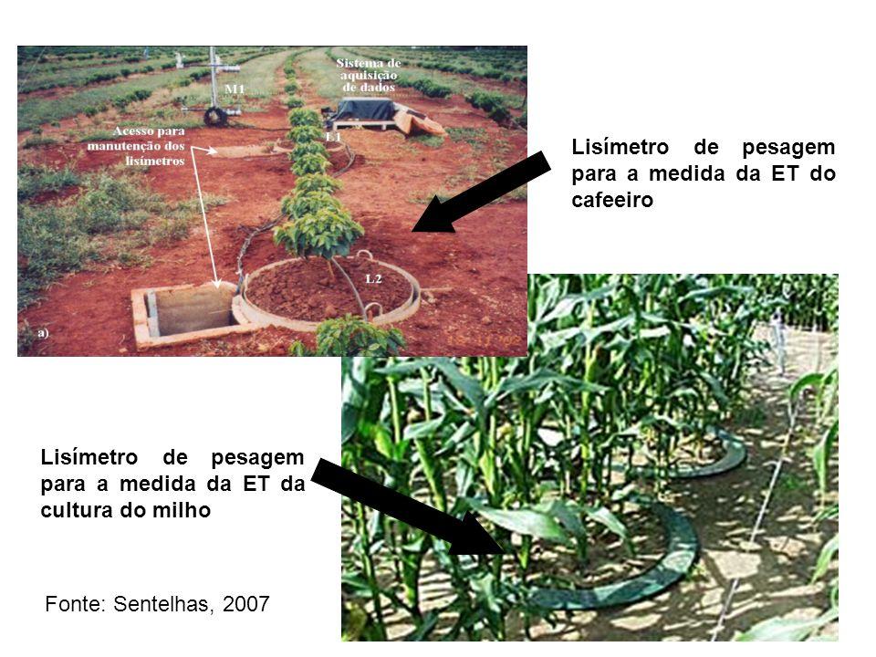 Lisímetro de pesagem para a medida da ET do cafeeiro Lisímetro de pesagem para a medida da ET da cultura do milho Fonte: Sentelhas, 2007