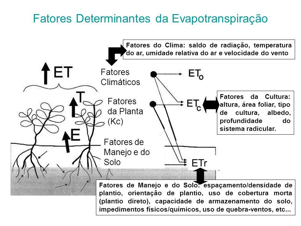 Fatores Determinantes da Evapotranspiração Fatores Climáticos Fatores da Planta (Kc) Fatores de Manejo e do Solo ETr Fatores do Clima: saldo de radiaç