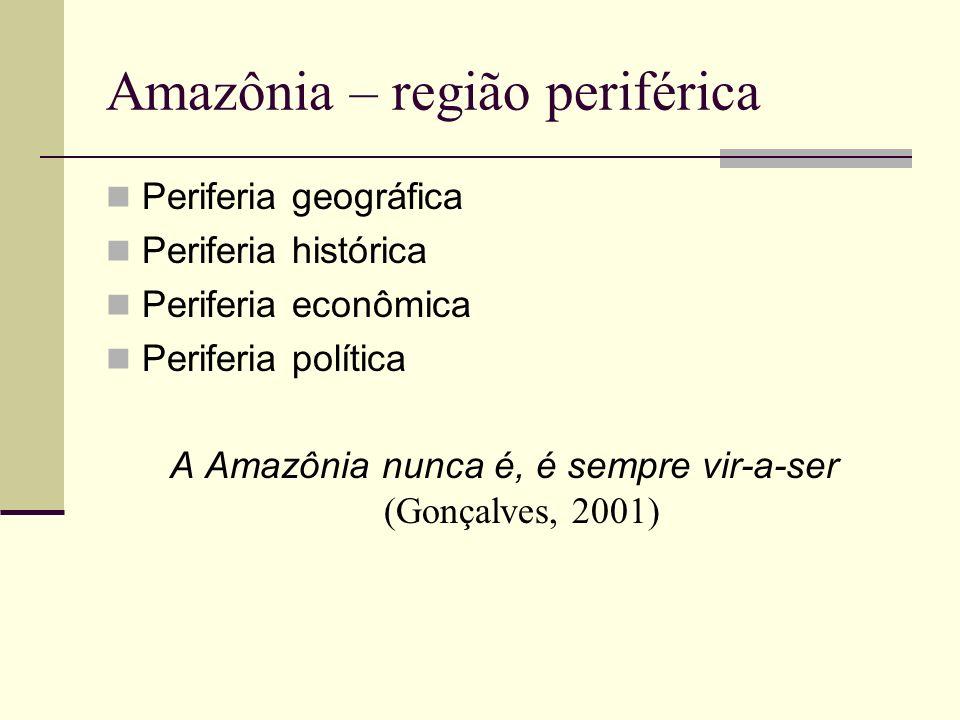 O Polamazônia (1974)...ancorava-se...numa visão de desenvolvimento regional que tinha por fundamento a necessidade de concentração espacial de capitais, capazes de produzir desequilíbrios e, em decorrência destes, impulsionar processos de desenvolvimento por meio do surgimento de uma cadeia de ligações para frente e para trás das atividades consideradas chave.