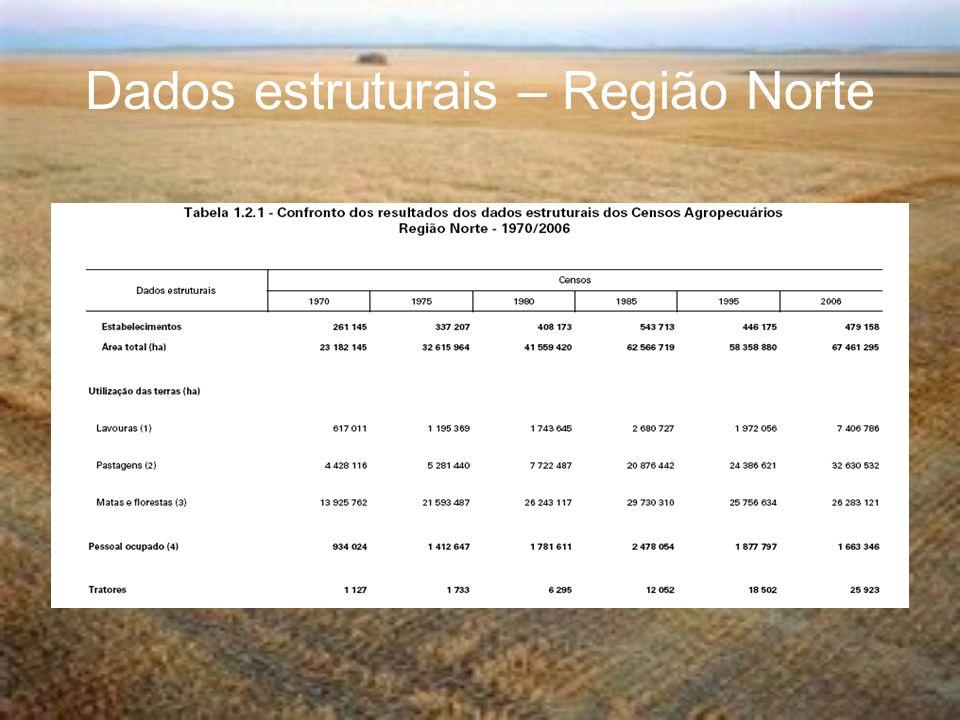 Dados estruturais – Região Norte
