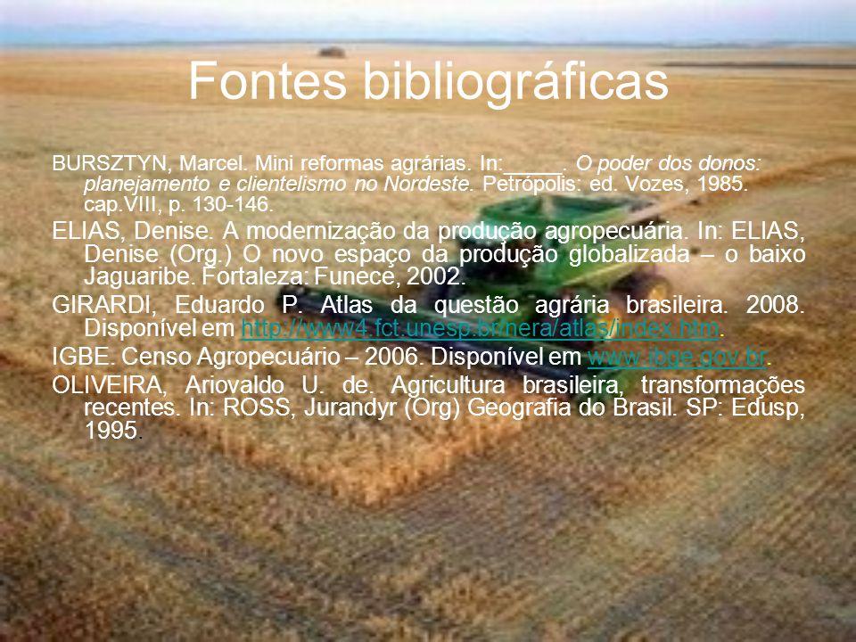 Fontes bibliográficas BURSZTYN, Marcel. Mini reformas agrárias. In:_____. O poder dos donos: planejamento e clientelismo no Nordeste. Petrópolis: ed.
