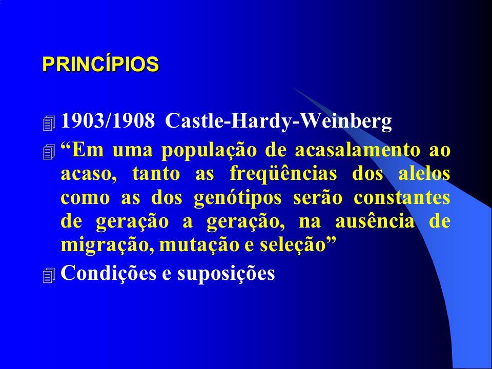 PRINCÍPIOS 4 1903/1908 Castle-Hardy-Weinberg 4 Em uma população de acasalamento ao acaso, tanto as freqüências dos alelos como as dos genótipos serão constantes de geração a geração, na ausência de migração, mutação e seleção 4 Condições e suposições
