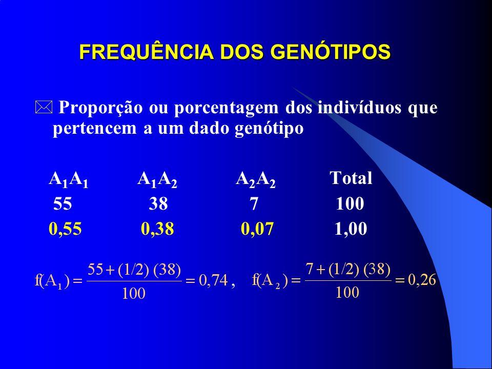 FREQUÊNCIA DOS GENÓTIPOS * Proporção ou porcentagem dos indivíduos que pertencem a um dado genótipo A 1 A 1 A 1 A 2 A 2 A 2 Total 55 38 7 100 0,55 0,38 0,07 1,00,