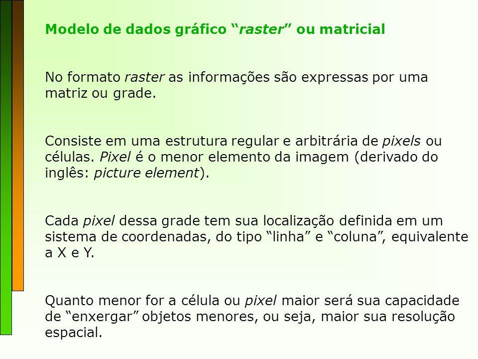Modelo de dados gráfico raster ou matricial No formato raster as informações são expressas por uma matriz ou grade. Consiste em uma estrutura regular