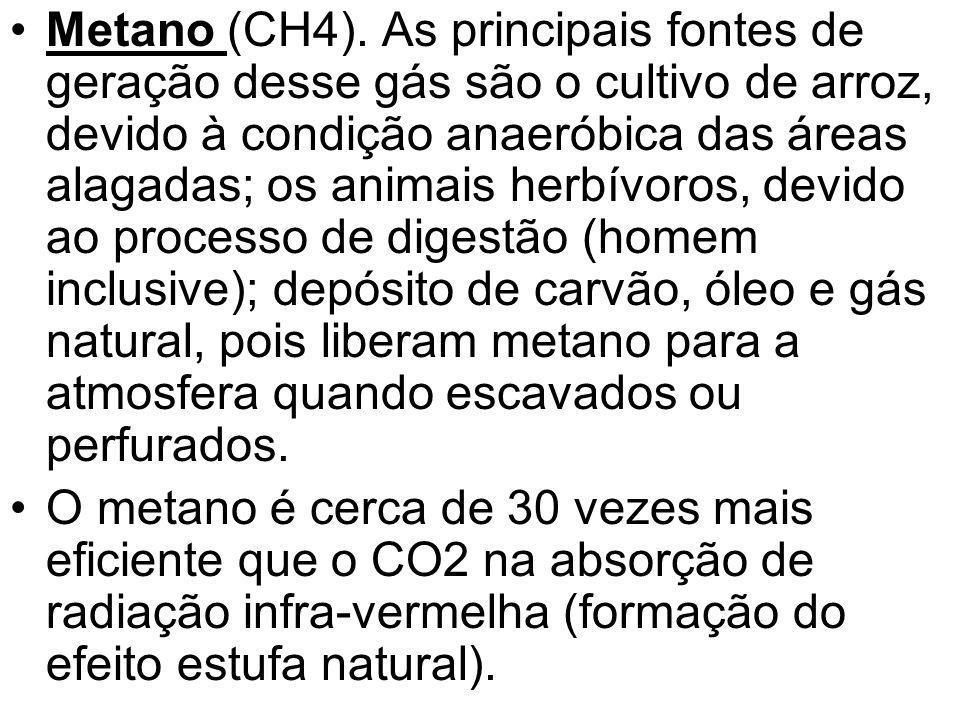 Metano (CH4). As principais fontes de geração desse gás são o cultivo de arroz, devido à condição anaeróbica das áreas alagadas; os animais herbívoros