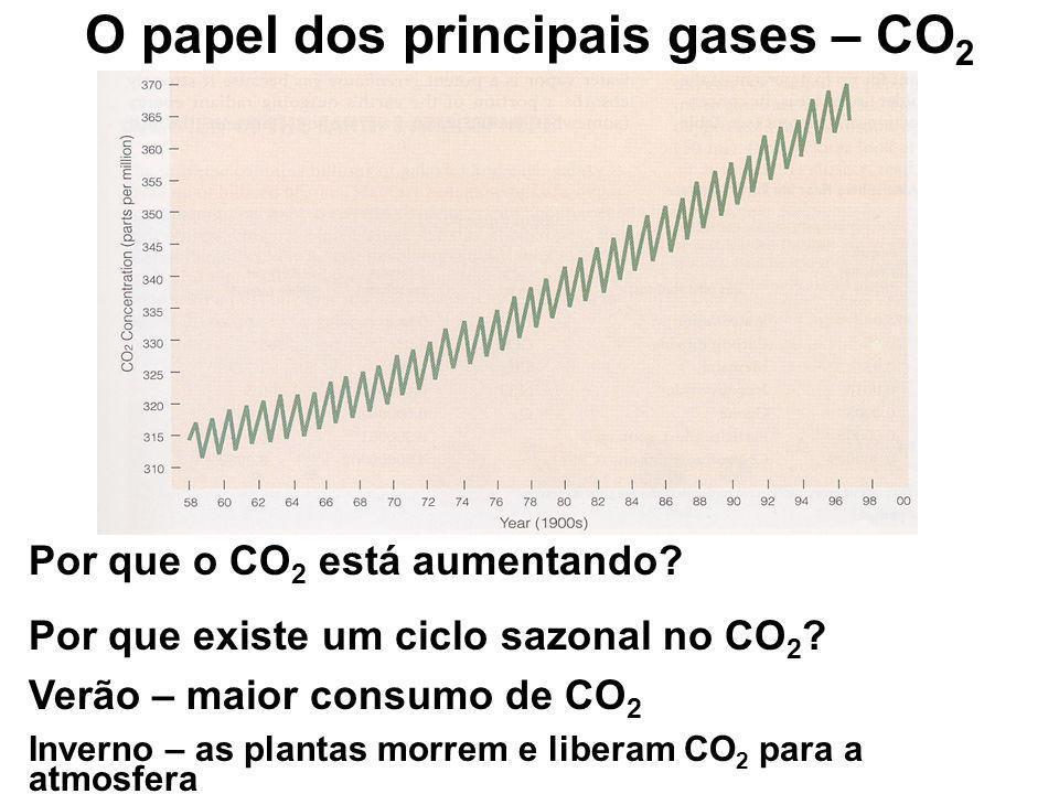 O papel dos principais gases – CO 2 Por que o CO 2 está aumentando? Por que existe um ciclo sazonal no CO 2 ? Verão – maior consumo de CO 2 Inverno –