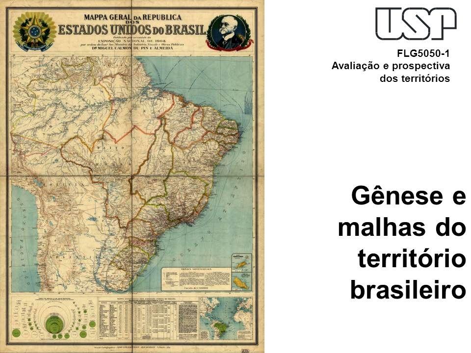 Gênese e malhas do território brasileiro FLG5050-1 Avaliação e prospectiva dos territórios