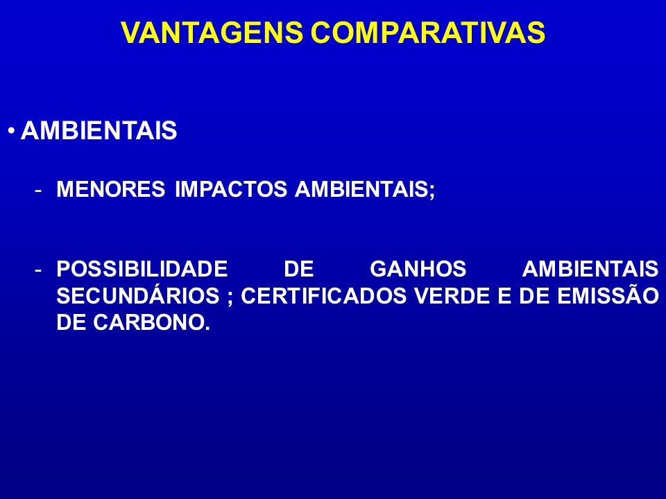 VANTAGENS COMPARATIVAS -MENORES IMPACTOS AMBIENTAIS; -POSSIBILIDADE DE GANHOS AMBIENTAIS SECUNDÁRIOS ; CERTIFICADOS VERDE E DE EMISSÃO DE CARBONO. AMB