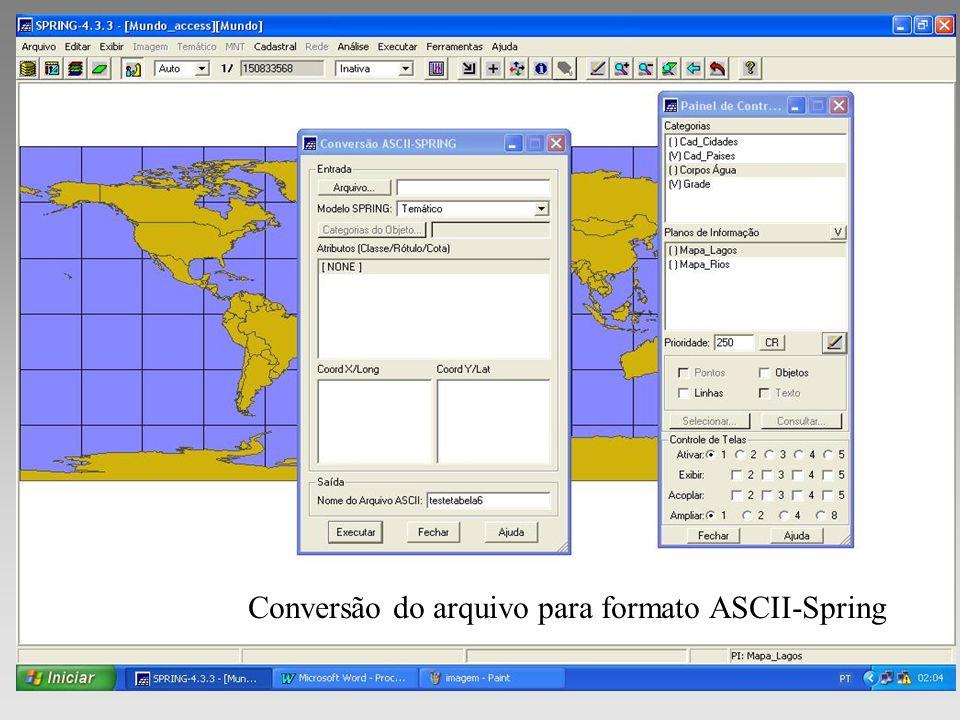 Conversão do arquivo para formato ASCII-Spring
