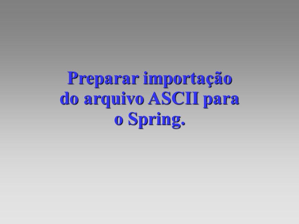 Preparar importação do arquivo ASCII para o Spring.