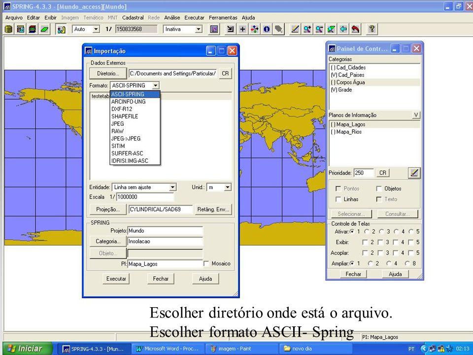 Escolher diretório onde está o arquivo. Escolher formato ASCII- Spring
