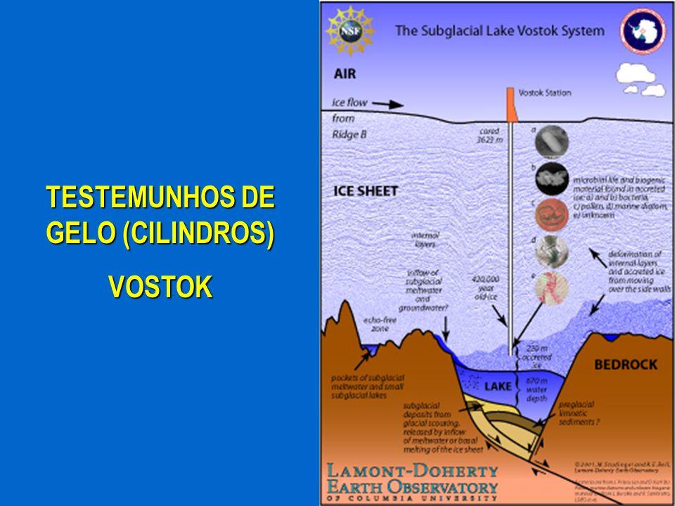 TESTEMUNHOS DE GELO (CILINDROS) VOSTOK