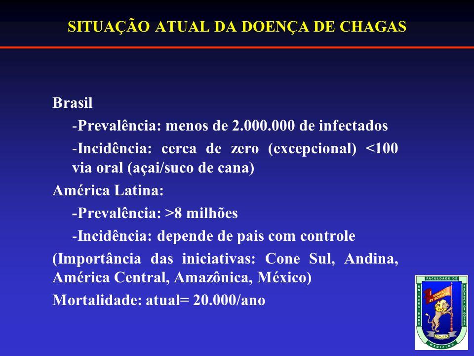 SITUAÇÃO ATUAL DA DOENÇA DE CHAGAS Brasil -Prevalência: menos de 2.000.000 de infectados -Incidência: cerca de zero (excepcional) <100 via oral (açai/suco de cana) América Latina: -Prevalência: >8 milhões -Incidência: depende de pais com controle (Importância das iniciativas: Cone Sul, Andina, América Central, Amazônica, México) Mortalidade: atual= 20.000/ano