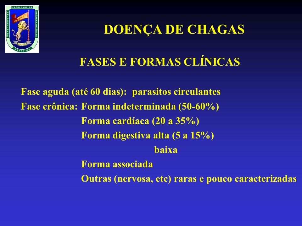 DOENÇA DE CHAGAS FASES E FORMAS CLÍNICAS Fase aguda (até 60 dias): parasitos circulantes Fase crônica:Forma indeterminada (50-60%) Forma cardíaca (20 a 35%) Forma digestiva alta (5 a 15%) baixa Forma associada Outras (nervosa, etc) raras e pouco caracterizadas