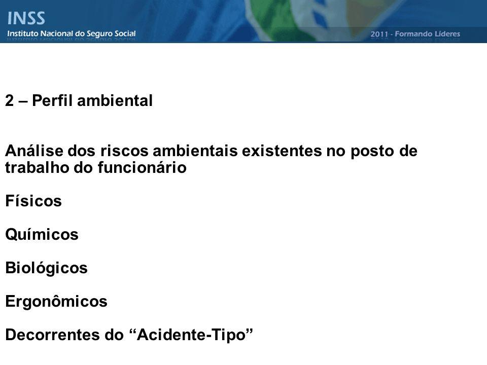 2 – Perfil ambiental Análise dos riscos ambientais existentes no posto de trabalho do funcionário Físicos Químicos Biológicos Ergonômicos Decorrentes