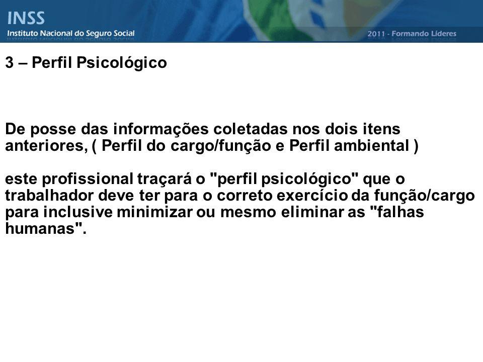 3 – Perfil Psicológico De posse das informações coletadas nos dois itens anteriores, ( Perfil do cargo/função e Perfil ambiental ) este profissional t